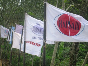 bendera1